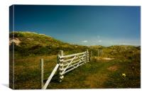 Braunton Burrows, Canvas Print