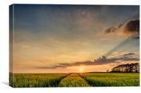 North Devon Sunset, Canvas Print