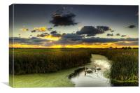 Braunton Marsh North Devon, Canvas Print