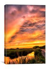 Sunset by Braunton Marsh, Canvas Print