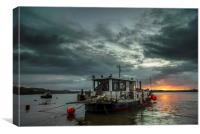 Sunrise on the River Taw, Canvas Print