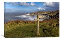 Bull Point North Devon, Canvas Print