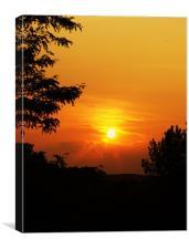 Solar Stare, Canvas Print