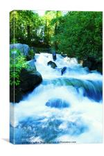 White Water, Canvas Print