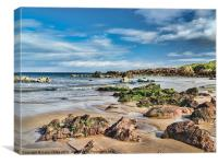 St Abbs beach, Canvas Print
