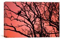 The Crow, Canvas Print