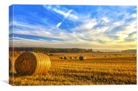 Halcyon Harvest Days, Canvas Print