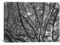 Under Tree, Canvas Print