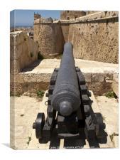 Citadel Cannon, Canvas Print