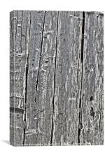 Aged Timber, Canvas Print