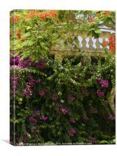 Mediterranean Garden, Canvas Print