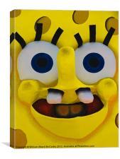 Spongey, Canvas Print