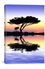 Tranquility at Water's Edge, Canvas Print