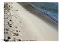 Tropical Beach Detail, Canvas Print