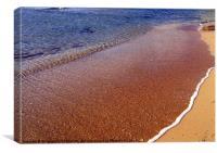 Beach Detail, Canvas Print
