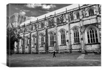 Winchester Cathedral Old Timer