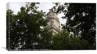 Tree tops and Town Clocks, Canvas Print