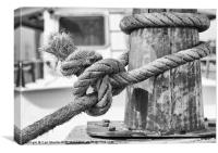 Frayed knot, Canvas Print