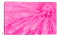 Bright Pink Wall Art, Canvas Print