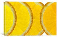 Refreshing Orange Slices, Canvas Print