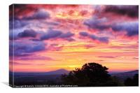 Shropshire Sunrise, Canvas Print