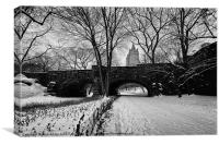 Central Park in the snow, Canvas Print
