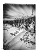 Drifting snow, Canvas Print