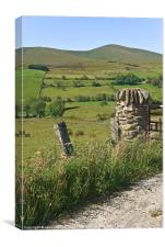 Gatepost in the Sperrin Mountains, Canvas Print