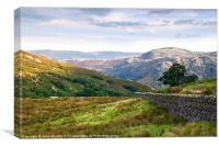 Borrowdale Valley, Lake District, Cumbria, Canvas Print