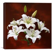 White Lilies on Red, Canvas Print