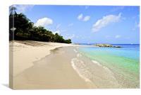 Barbados beach, Canvas Print