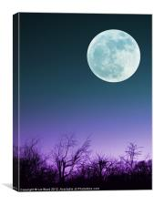 Once in a Blue Moon, Canvas Print