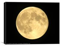 Big Full Moon, Canvas Print
