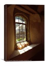 Sunny Window, Canvas Print