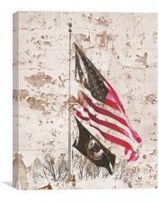 Washington DC Flags, Canvas Print