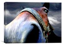 Storm Horse, Canvas Print