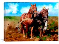 Plough Horses with Blue Sky