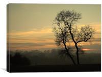 Misty Evening, Canvas Print