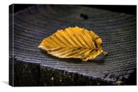 Golden Leaf, Canvas Print