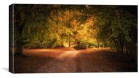 Golden Autumn Light, Canvas Print