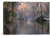 Winter in Bushy Ruff, Canvas Print