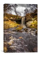 Ayrshire Waterfall, Canvas Print
