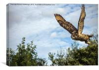 Turkmanian Eagle Owl, Canvas Print