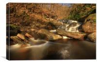 Artlet Falls, Inversnaid., Canvas Print