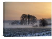 mist above the snow, Canvas Print