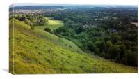 Reigate hill, south downs, Canvas Print