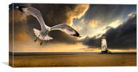 soaring inshore, Canvas Print
