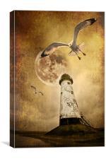 Lunar Flight, Canvas Print