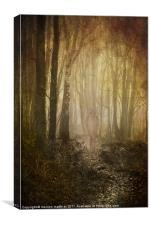 stroll through my mind, Canvas Print