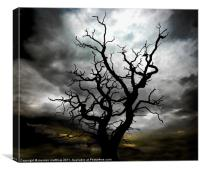 lightning tree 2, Canvas Print
